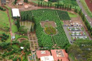 Dole Plantation, Hawaii